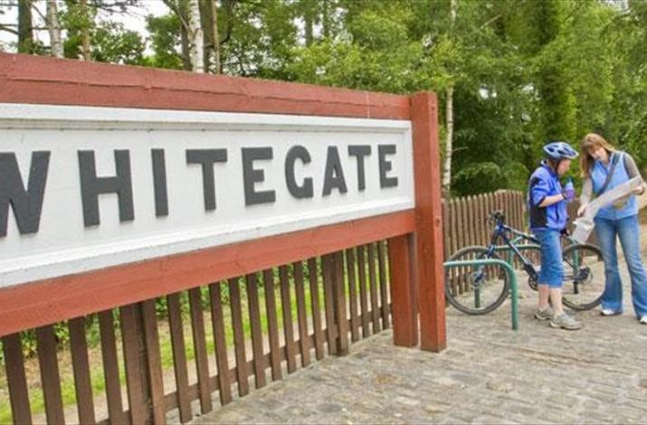 Whitegate Way